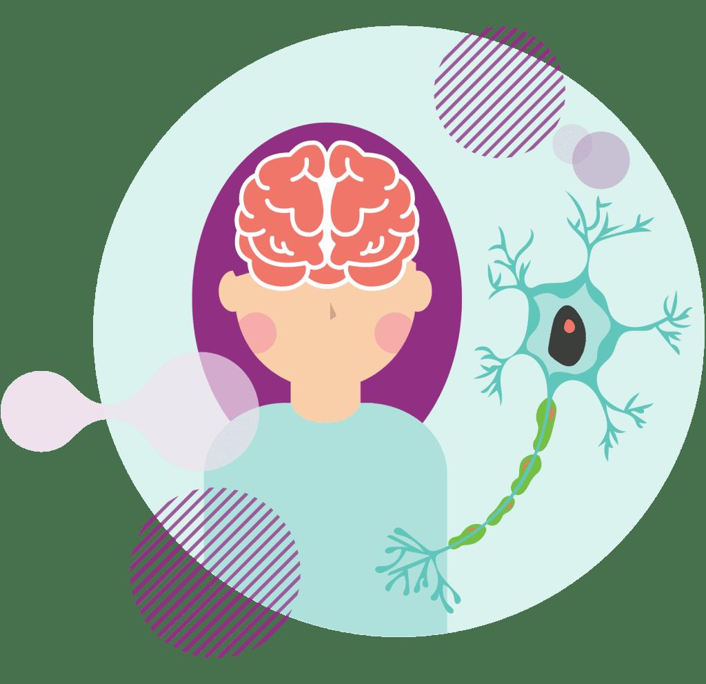 What causes Multiple Sclerosis 甚麼是多發性硬化症 HK 香港 免疫系統 Immune System 神經疾病 Neuropathy